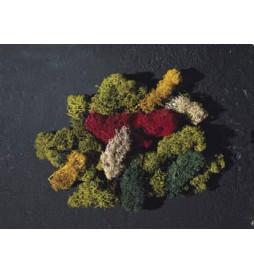 Mech wyspowy (5 kolorów) - Faller 170730