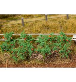 Krzaki pomidorów ca. 15mm, 18 szt. - Faller 181259