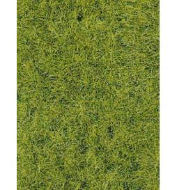 Heki 1576 - Trawa siateczka leśna zieleń 28x14 cm