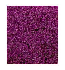Heki 1586 - Kwiaty wrzosowe 28x14 cm