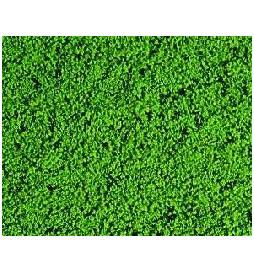 Heki 1601 - Heki Mikroflor zielony 28x14 cm