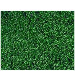 Heki 1603 - Heki Mikroflor zieleń sosny 28x14 cm