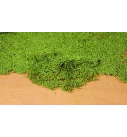 Heki 1676 - Listowie zielone 28x14 cm