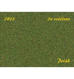 POLAK 2823 - Listowie zieleń osikowa, grube