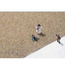 Auhagen 75609 - Trawa elektrostatyczna 2,5 mm, zimowa trawa, 75 g