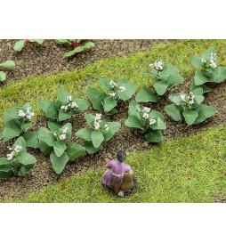 14 roślin tytoniu - Faller 181275