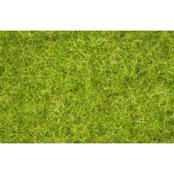 "Noch 07076 - Master Grass Blend ""Summer Meadow"""