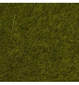 Noch 07090 - Trawa elektrostatyczna łąka