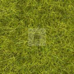 "Noch 07095 - Wild Grass XL ""Meadow"""