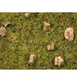 Noch 08360 - Trawa elektrostatyczna-Alpejska łąka