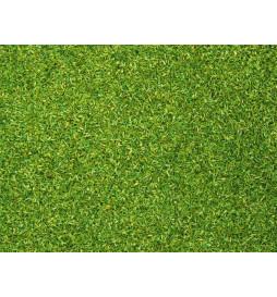 Noch 08410 - Posypka zielona