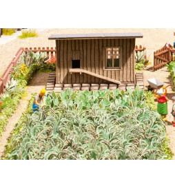 Noch 14107 - Ogród warzywny