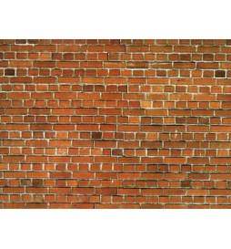 Noch 57730 - Mur z czerwonej cegły
