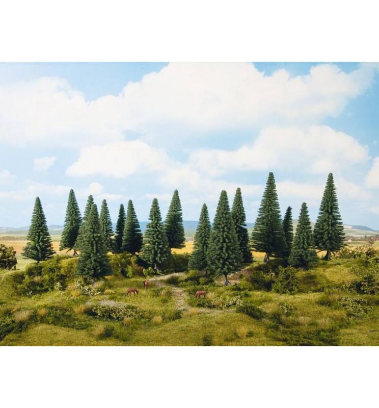Noch 24643 - Drzewa iglaste, Jodły 16 sztuk, 4-10 cm