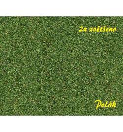 POLAK 2833 - NATUREX F Gruby Zieleń Brzozowa 100ml