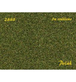 POLAK 2843 - NATUREX F Gruby Zieleń Średnia 100ml
