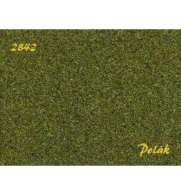 POLAK 2842 NATUREX F ŚREDNI ZIELEŃ ŚREDNIA