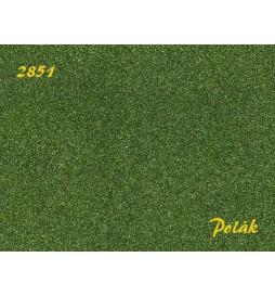 POLAK 2851 NATUREX F DROBNY ZIELEŃ BUKOWA