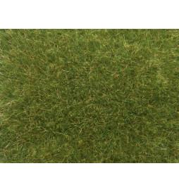 Noch 07118 - Trawa elektrostatyczna dzika trawa zielona XL 9mm, 50g