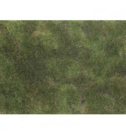 Noch 07251 -Siateczka kolor oliwkowy