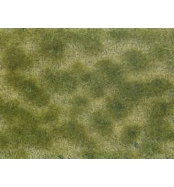 Noch 07253 - Siateczka beżowo - zielona